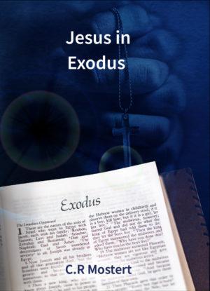 Jesus In Exodus e-Boek